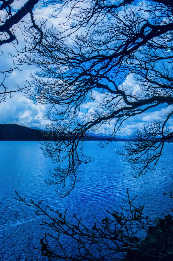 Scottish Highlands Loch Ness landscape. Scottish Highlands lake of Loch Ness landscape with clear blue sky and dramatic clouds, and branches on the foreground stock image