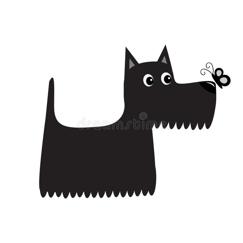 Scottish terrier black dog looking to butterfly insect. Scottie puppy. Cute cartoon character. Pet animal collection. Adopt concept. Flat design. White stock illustration