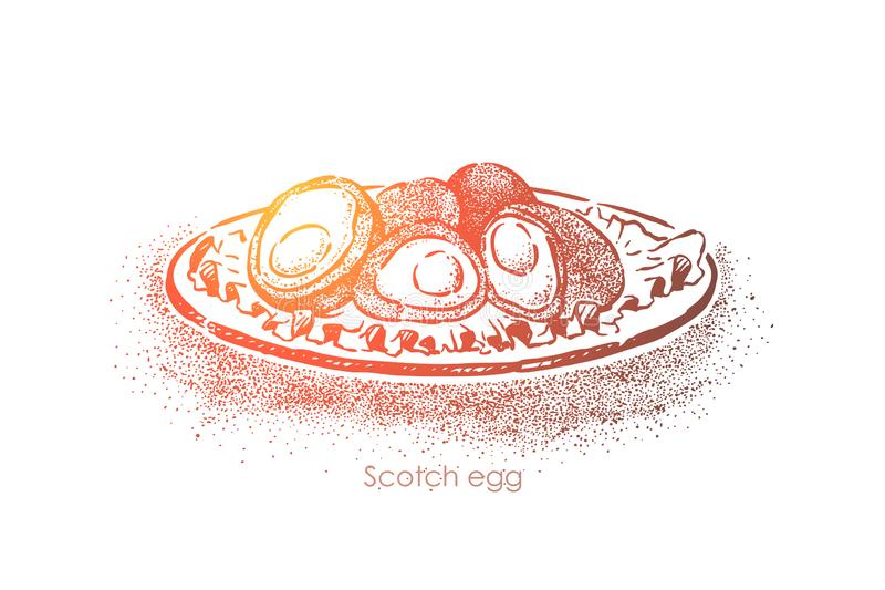 Scottish traditional food, british cuisine dish, boiled egg smeared in minced meat and fried in breadcrumbs royalty free illustration