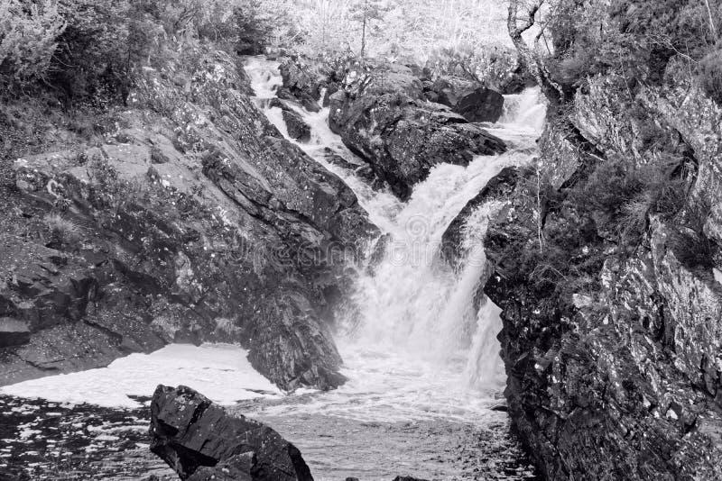 Scottish Waterfall, the Rogie Falls royalty free stock photos