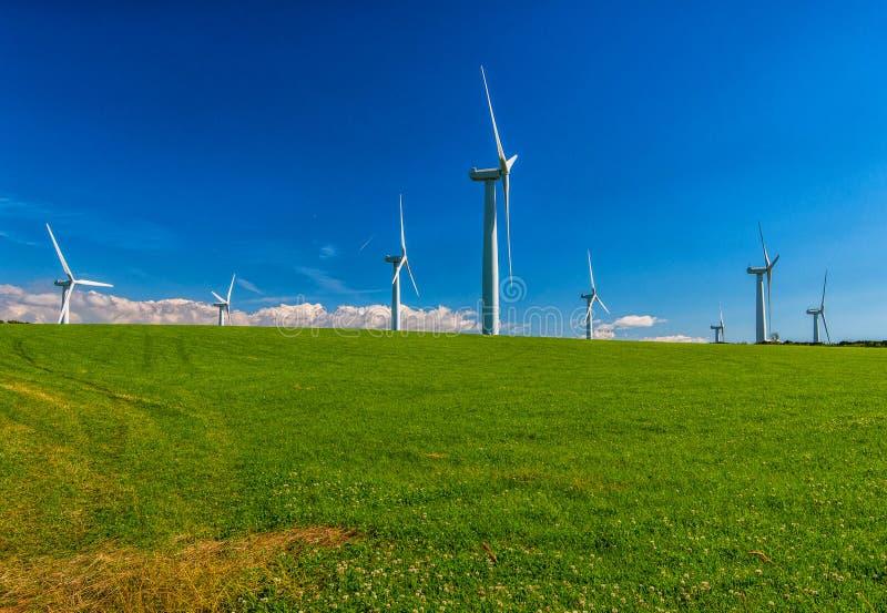 Scottish Wind stock images