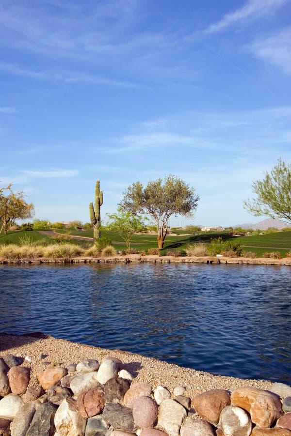Scottsdale Resort royalty free stock photo