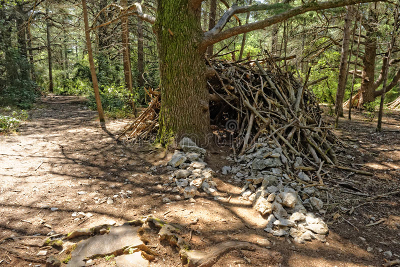Scout shelter. Scouts shelter made of branches in a forest, Provence, France stock photo