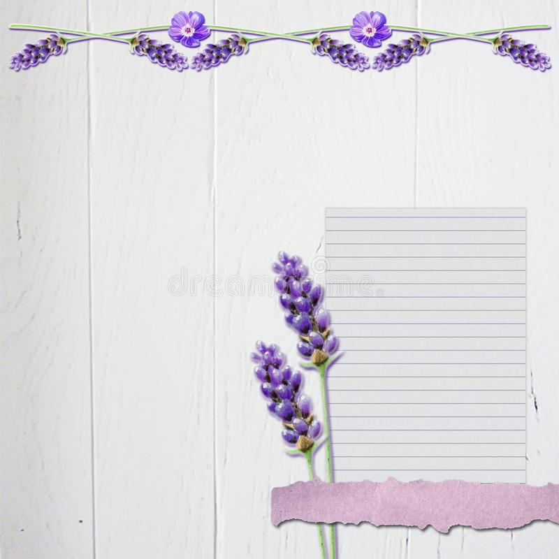 Lavender Floral Scrapbook Background with White Wood #4. Scrapbook Background page design to print out endlessly. The suface is a photo of white painted wood. On royalty free stock image