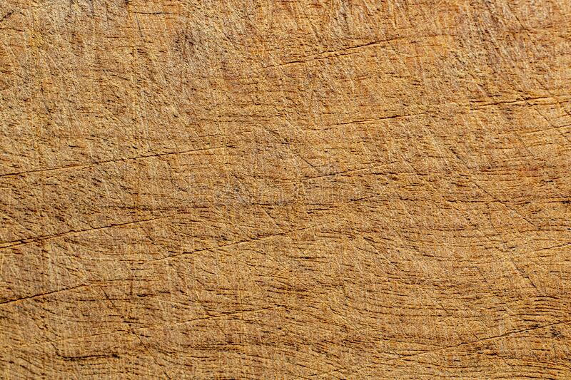 Scratched old wood texture. Macro shot with good scratch details. Wooden backgrounds. Old , weathered wood texture stock photos