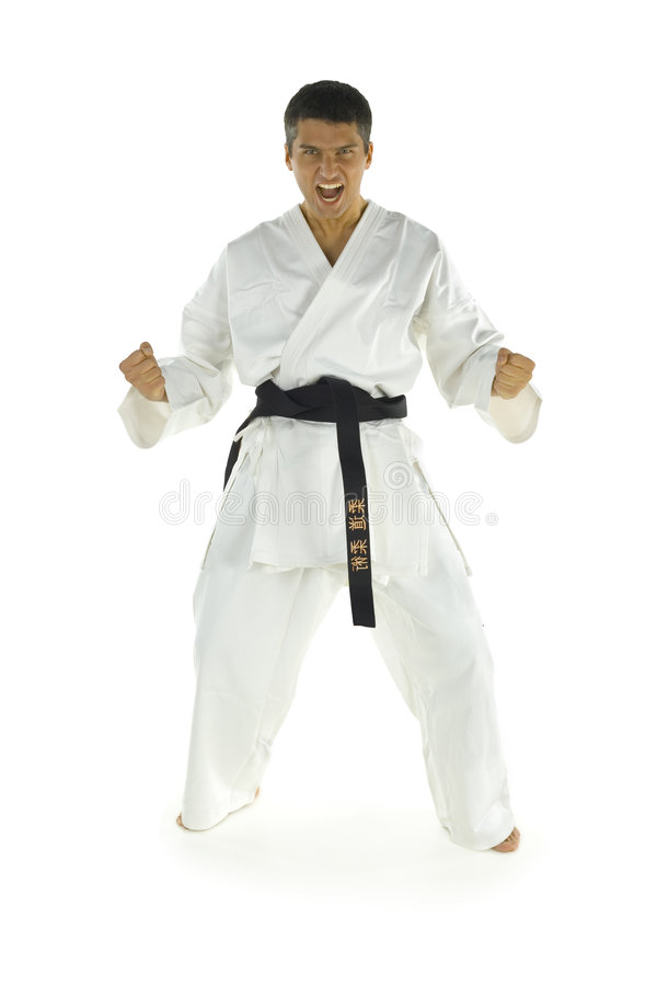 Download Screaming karate fighter stock image. Image of active - 3776603