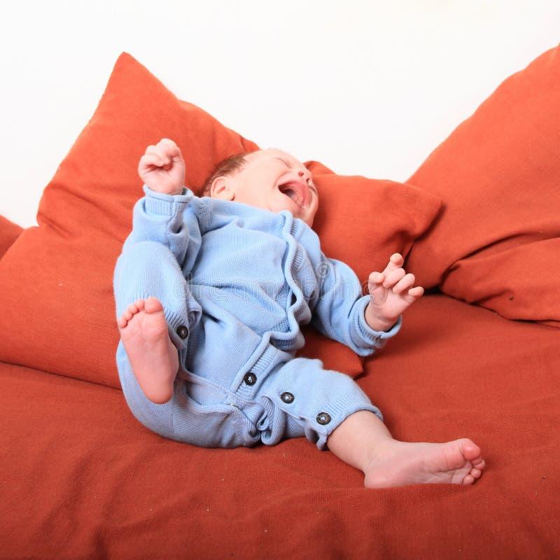 Screaming newborn baby girl stock image