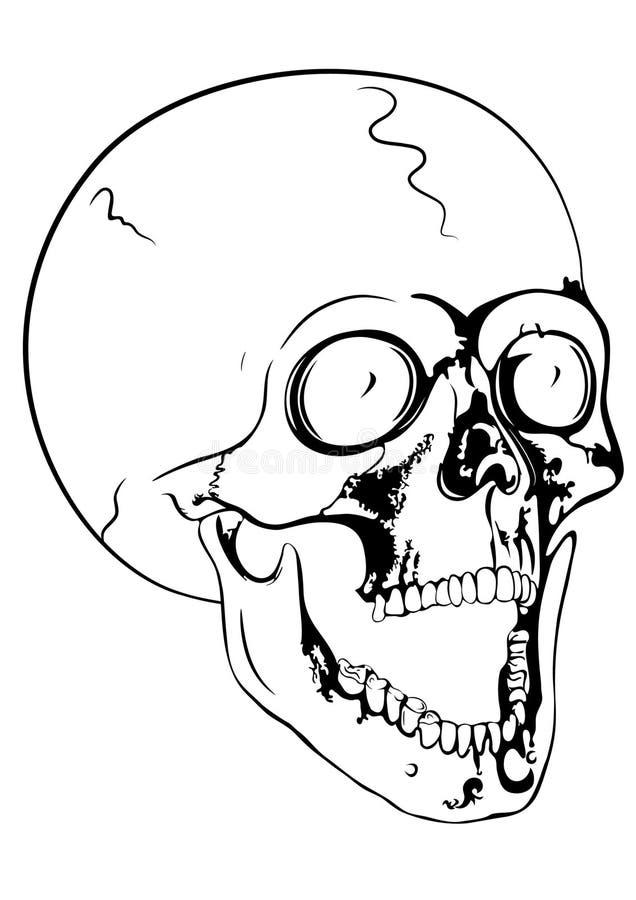 Download Screaming skull stock illustration. Image of sign, doom - 14989112