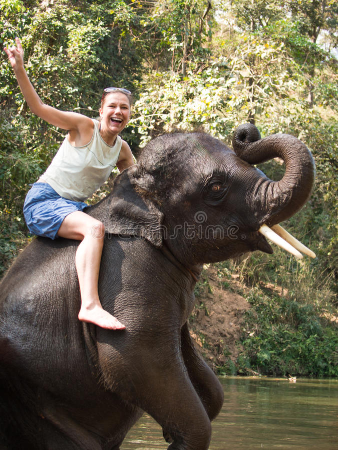 Screaming woman sits riding on young elephant that had risen on his hind legs and wrapped his trunk. Against the background of the jungle royalty free stock photos