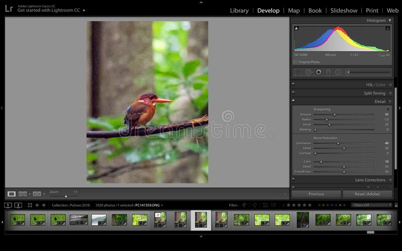 Noise reduction software, Adobe Lightroom. Screen shot of noise reduction software interface. Using Adobe Lightroom`s built in noise reduction tool to reduce royalty free stock images