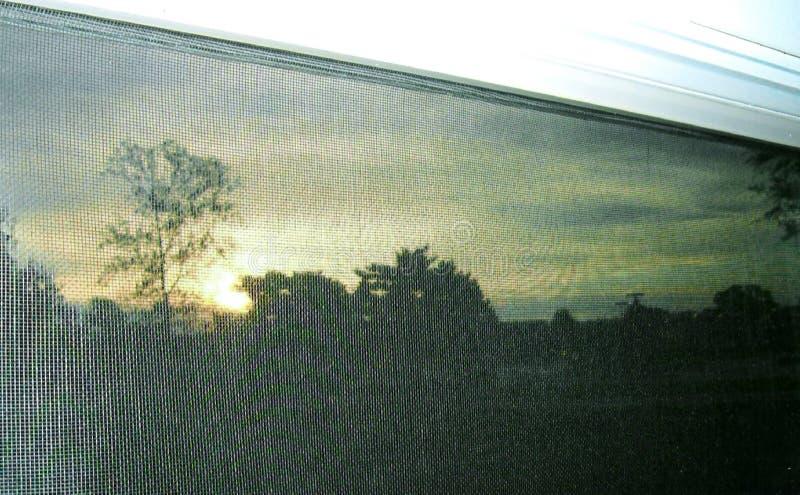 Screened Sunrise stock images