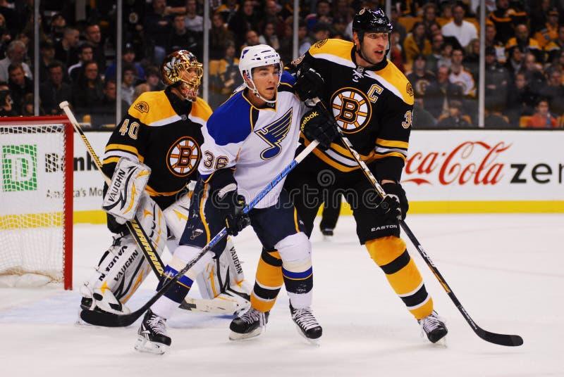 Screening Rask. St. Louis Blues forward Matt D'Agostini and Bruins defenseman Zdeno Chara battle for position in front of Bruins goalie Tuukka Rask stock image