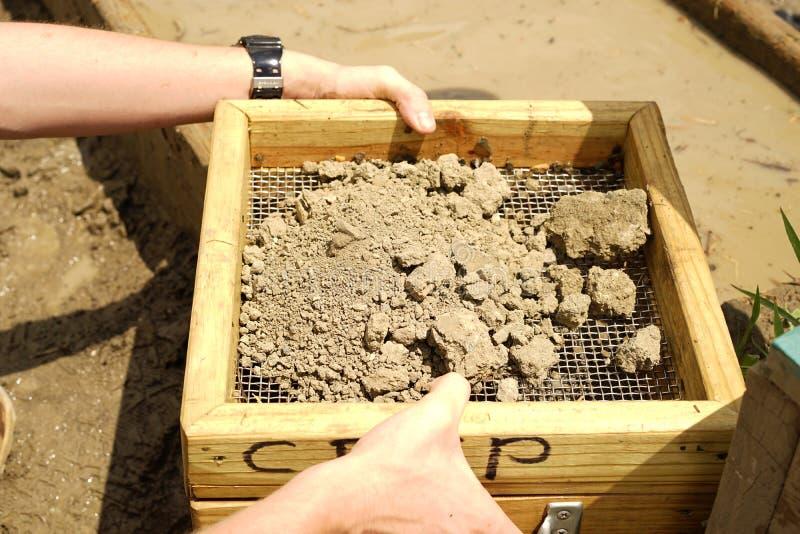 Screening soil for diamonds stock photo