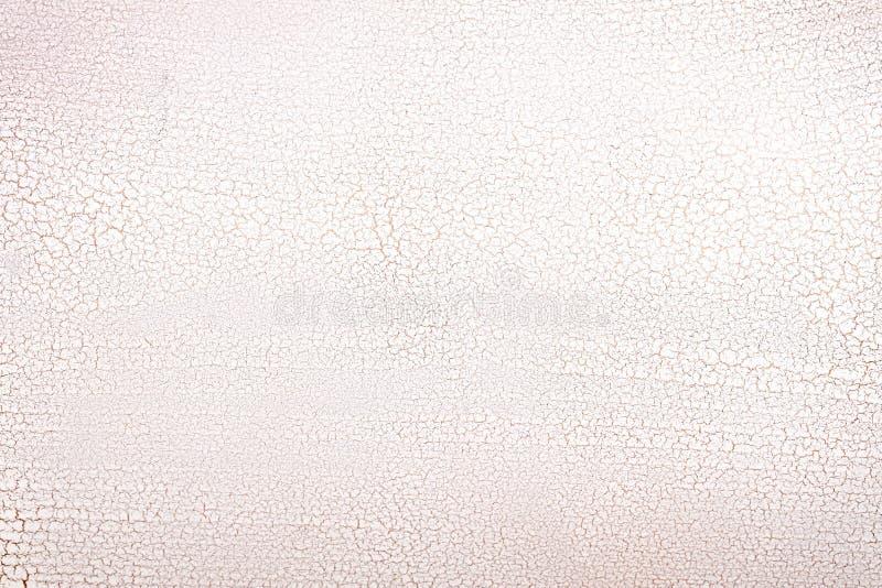 Screpolatura di superficie di legno bianca. fotografia stock