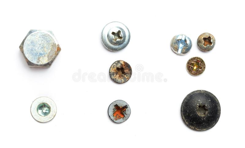Screw heads, nuts, rivets isolated on white. Image vector illustration