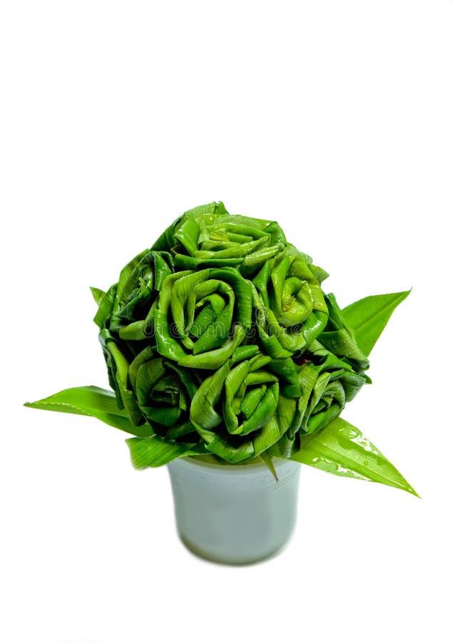 Free Screw-pine Leaves Royalty Free Stock Image - 16555736