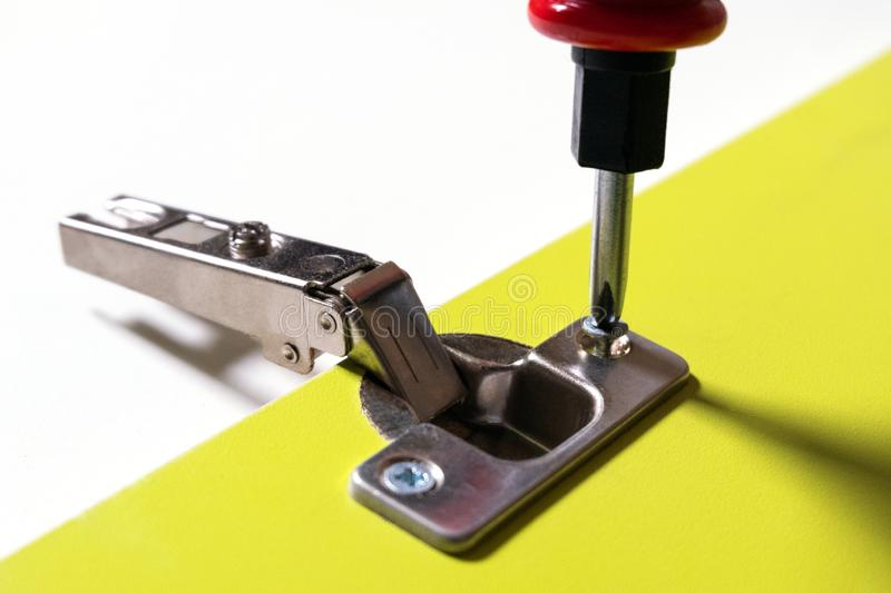 Installation of furniture hinges for doors on a green sheet of chipboard. Screw tightening with a screwdriver. Close-up. The royalty free stock image
