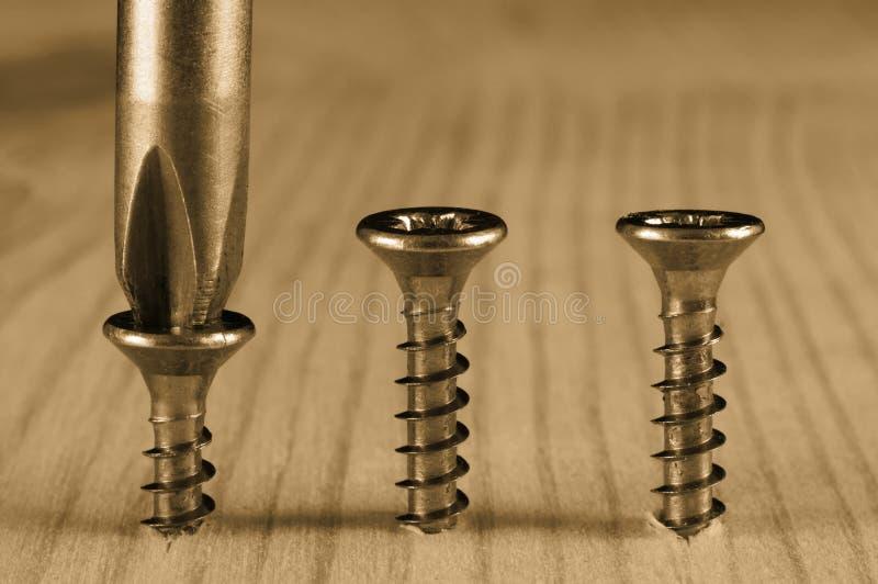 Screwdriver and screws stock photo