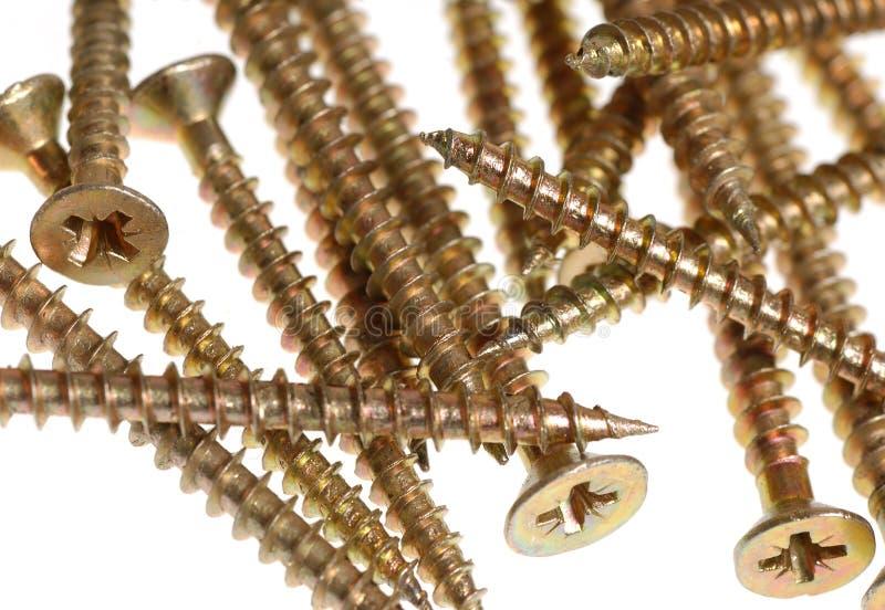 Screws. Spilled screws stock photos