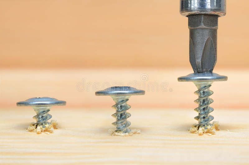 Screws screwdriver twist in wooden board. Joinery and construction work close up. Power tool operation royalty free stock image
