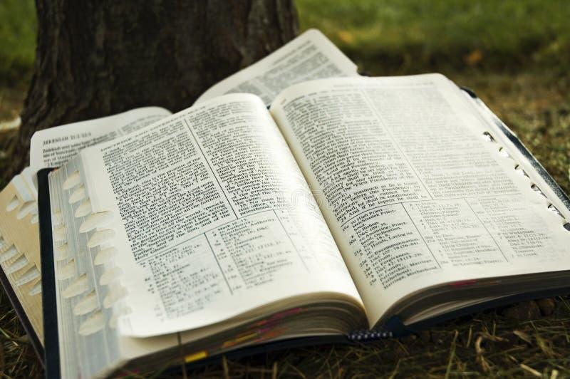 scriptures photos stock