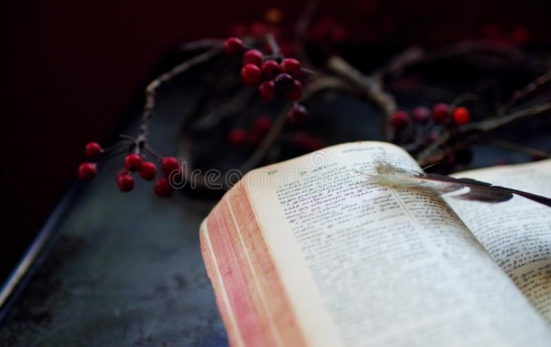 Scriptures royalty free stock photos