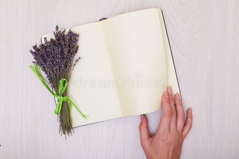 Scrittorio della lavanda su derisione di vista superiore del fondo su Apra lo sketchbook Taccuino fotografie stock