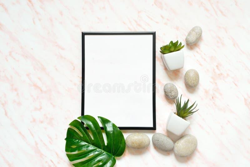 Scrittorio piano del marmo di disposizione con la struttura vuota bianca per testo, le pietre ed il fondo dei succulenti immagini stock