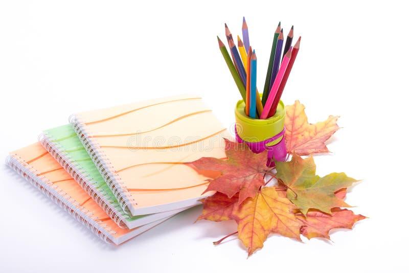 Scrittura-libri, matite multicolori e foglie di autunno fotografia stock