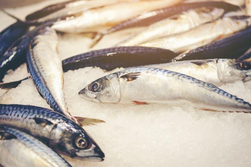 Scrombrus fresco del Scomber de los pescados de la caballa en el hielo, marisco frío SM imagenes de archivo