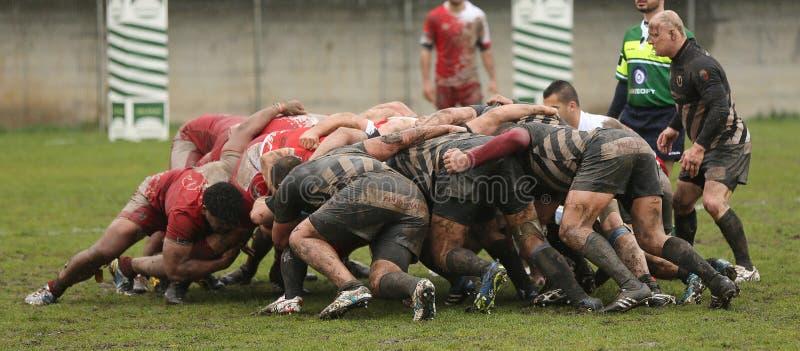 Scrum do rugby imagens de stock
