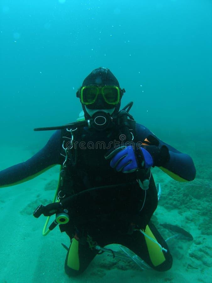Scuba Diver royalty free stock photography