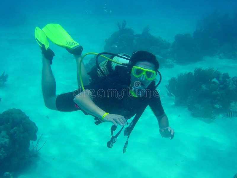 Download Scuba diver stock image. Image of scuba, ocean, dive, diver - 2133211