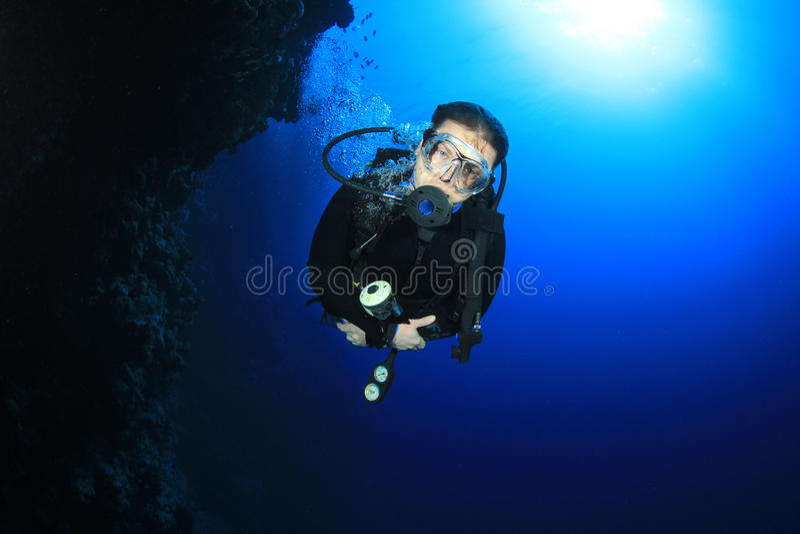 Download Scuba Diver stock photo. Image of dive, ecosystem, explore - 22617482