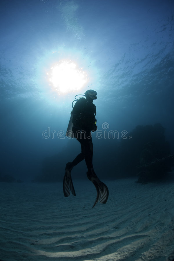 Free Scuba Diver Stock Photography - 2676352