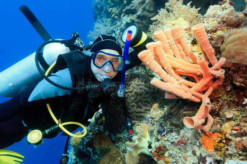 Download Scuba diver stock image. Image of diving, national, people - 27771051