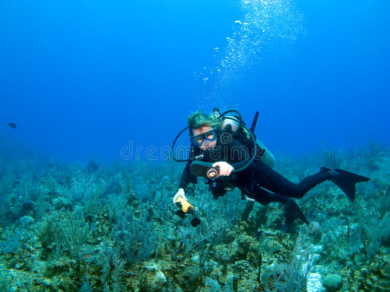 Scuba Diver Checking Gauges. In the Caribbean stock image