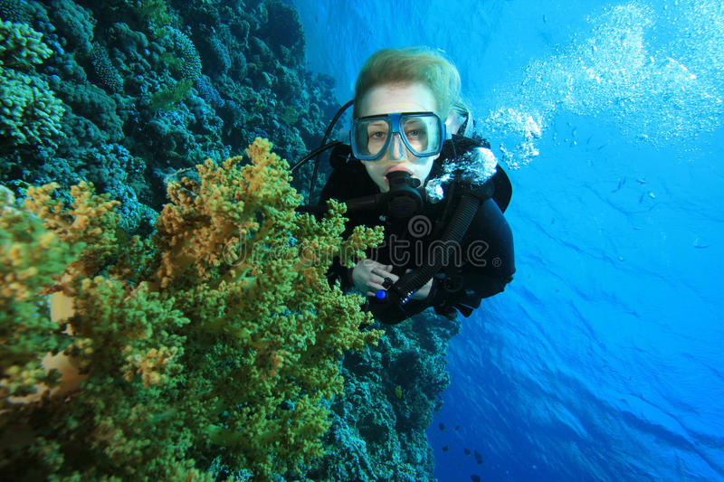Scuba Diver and Coral Reef royalty free stock photos