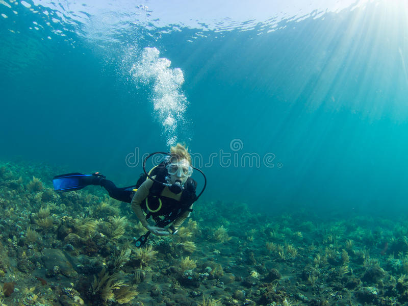 Scuba diver on coral reef stock photography