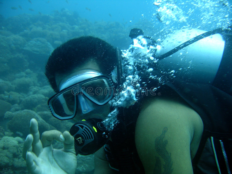Download Scuba diver give ok sign stock photo. Image of ocean, extreme - 272558