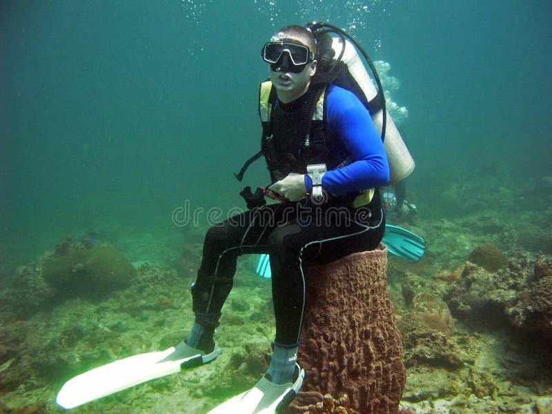 Scuba diver on sea toilet, Thailand stock photography