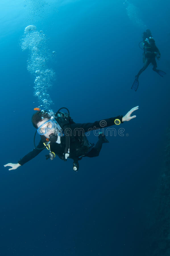 Scuba diver swimming in clear blue water royalty free stock photos
