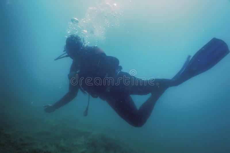 Scuba Diver Swimming Underwater Explores Reef and Examines Seabed. Underwater royalty free stock images