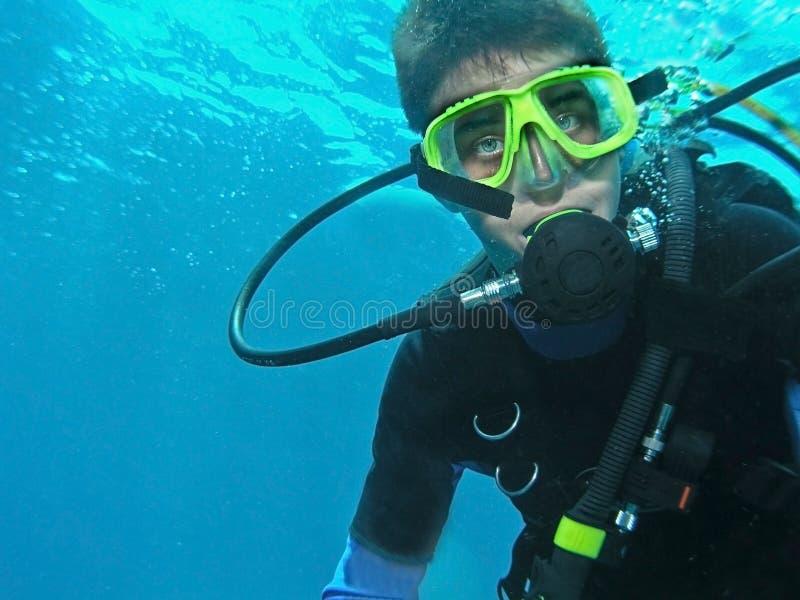 Scuba diver underwater royalty free stock photo