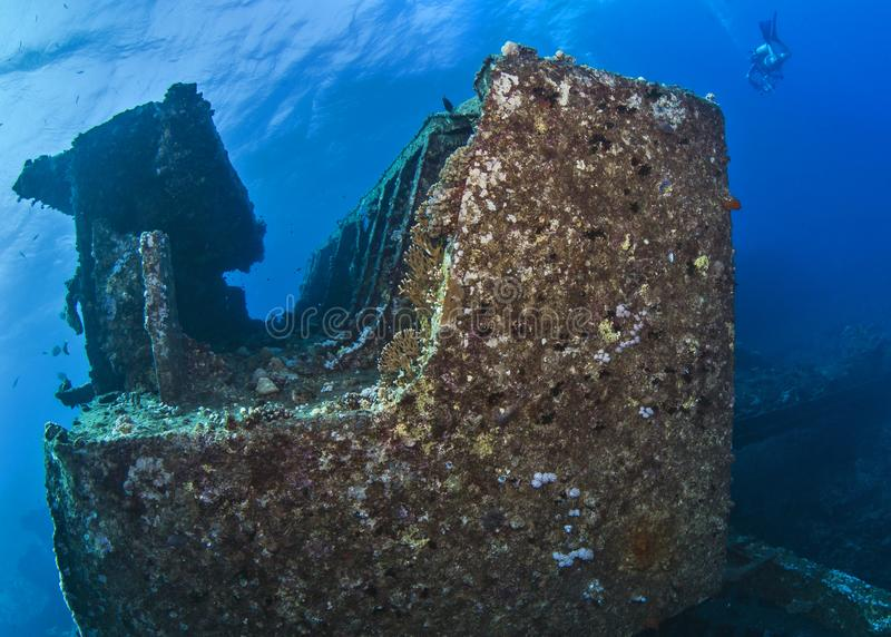 Scuba diver, underwater photographer swims over wreck in the Red Sea off the coast of Egypt. stock photo