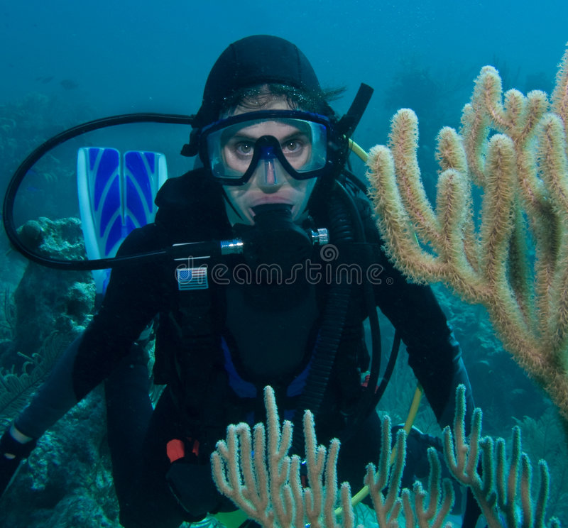 Scuba diver woman underwater royalty free stock photo