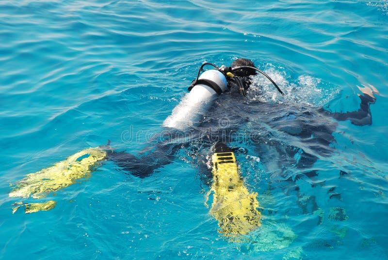 Download Scuba divers stock image. Image of ascending, human, person - 3672659