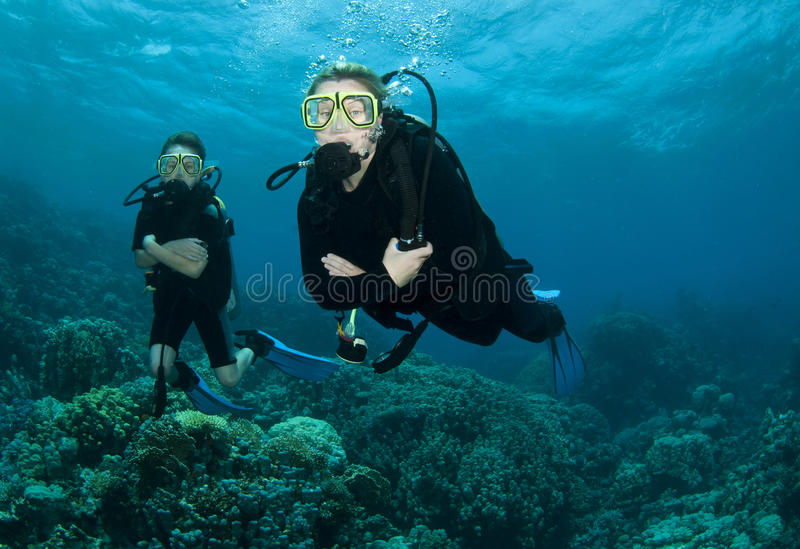 Scuba divers and coral royalty free stock photos