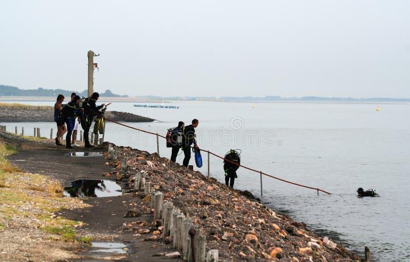 Scuba divers in Eastern Scheldt stock images