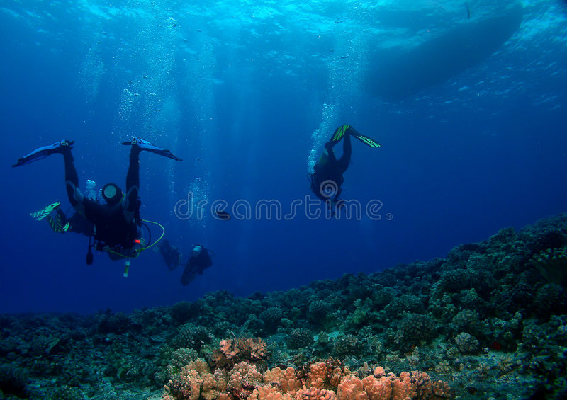 Scuba Divers heading back to the Boat. Divers heading back to the boat with lighted Coral in the foreground stock images